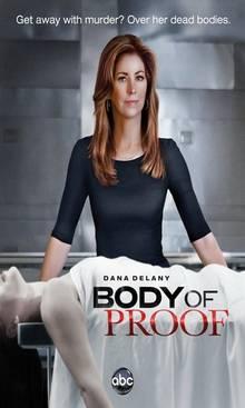 Следствие по телу (серии 1-13)